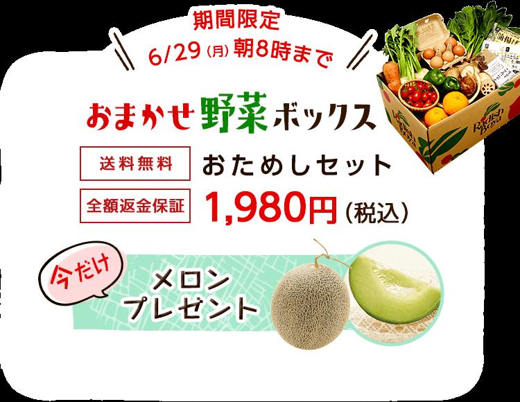 送料無料 金額返金保証 おまかせ野菜ボックス おためしセット 1,980円(税込) 今だけらでぃっしゅのラーメンプレゼント
