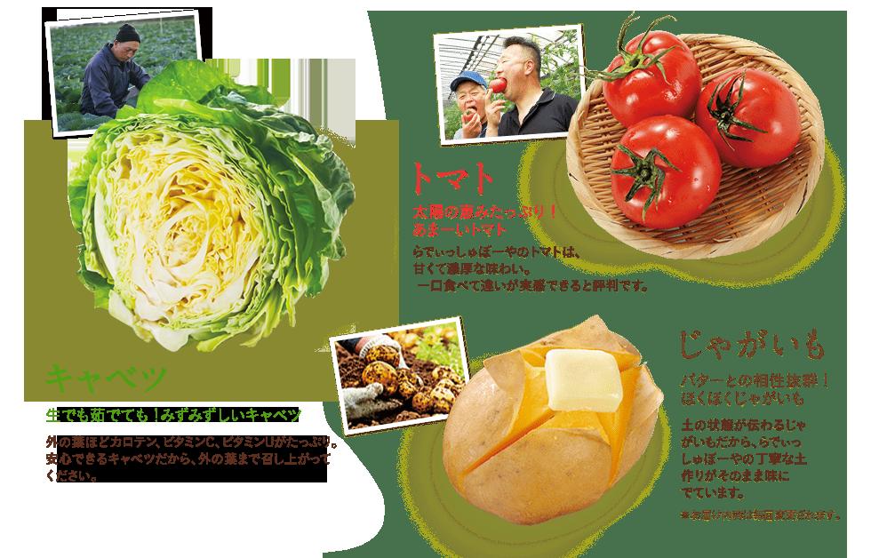 キャベツ生でも茹でても!瑞々しいキャベツ外の葉ほどカロテン、ビタミンC、Uがたっぷり。 安心キャベツだから、外の葉まで召し上がってください。トマト太陽の恵みたっぷり! あまーいトマトらでぃっしゅぼーやのトマトは、 甘くて濃厚な味わい。一口食べて違いが実感できると評判です。じゃがいもバターとの相性抜群! ほくほくじゃがいも土の状態が伝わるじゃがいもだから、らでぃっしゅぼーやの丁寧な土作りがそのまま味に でています。  ※お届け内容は毎回変更されます。